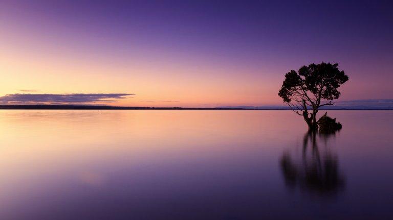 sunset-1373171.jpg